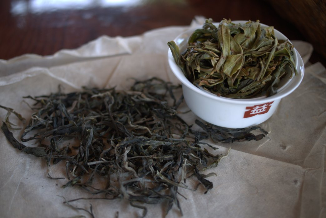 Ban Po Mountain Sheng Pu Erh 2015 - Copyright Celine Thiry 2015